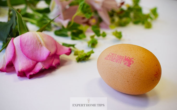 Egg with Flower