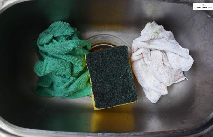 Germs on dish sponge