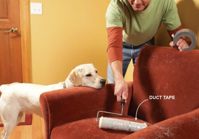 Man using paint roller to lift pet hair