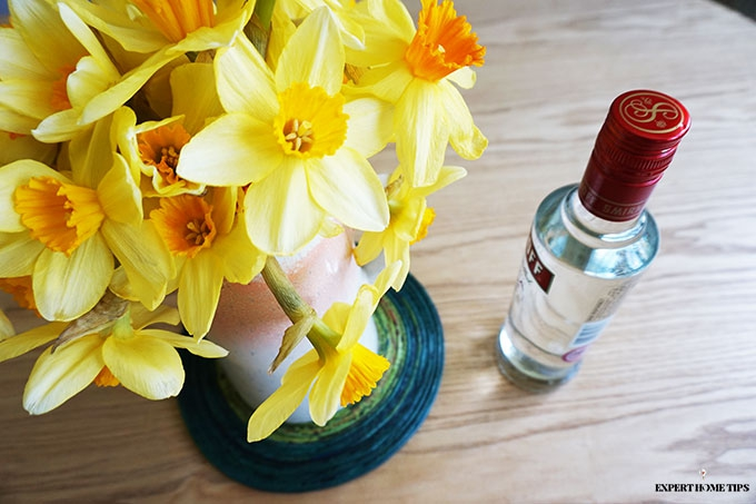 Vodka botle and yellow daffodils