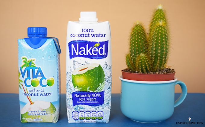 coconut water and cactus