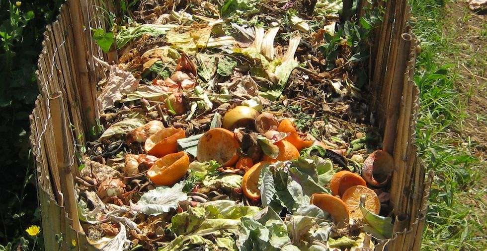 How To Make Compost: 27 Surprising Things You Can Add To The Heap