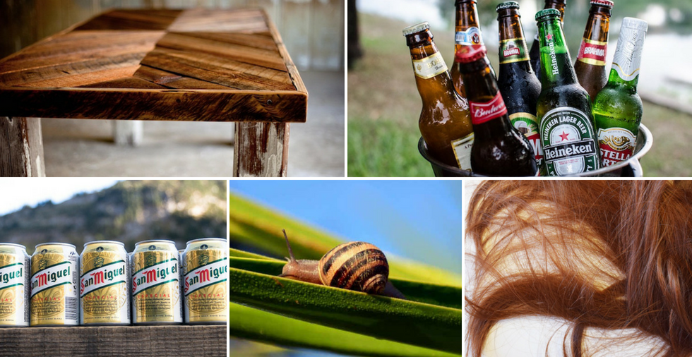 19 Alternative Uses For Beer (That Won't Get You Drunk!)