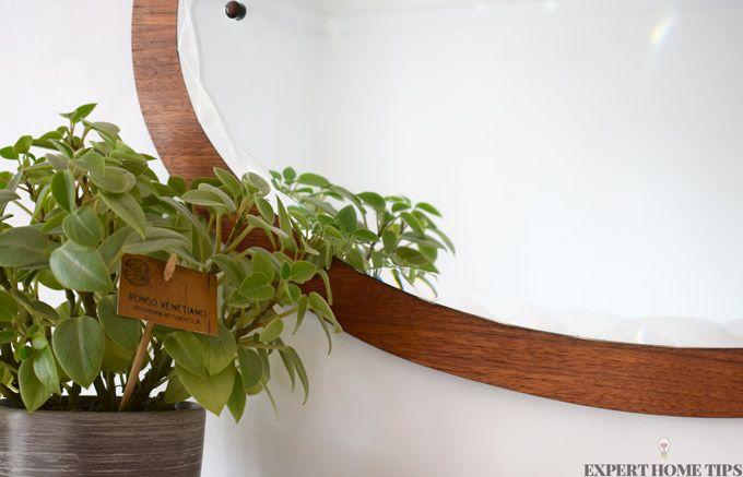 vintage mirror plant