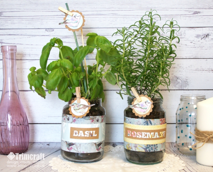 Grow something tasty in your jar.