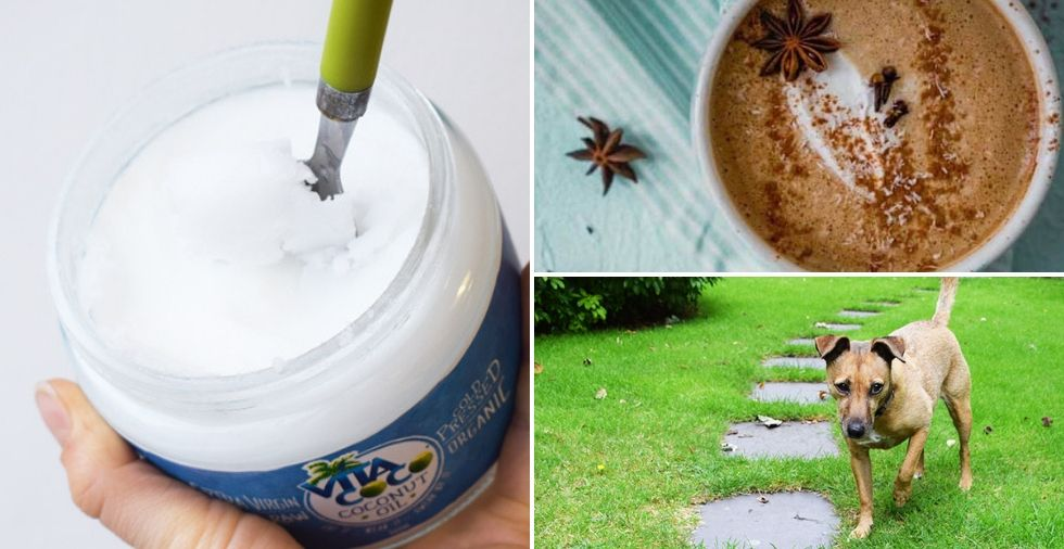 26 Clever Uses For Coconut Oil (That You've NEVER Heard Of Before!)