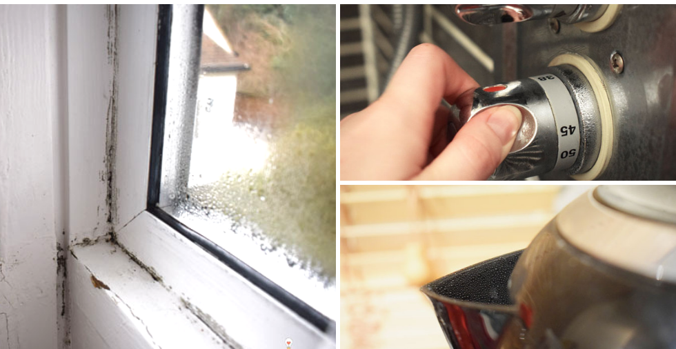 How To Get Rid Of Mould For GOOD: Causes, Prevention & Treatments