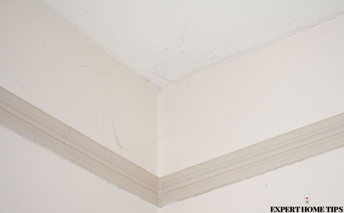 spider webs in ceiling corner