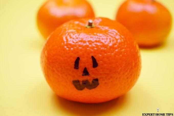 pumpkin satsuma