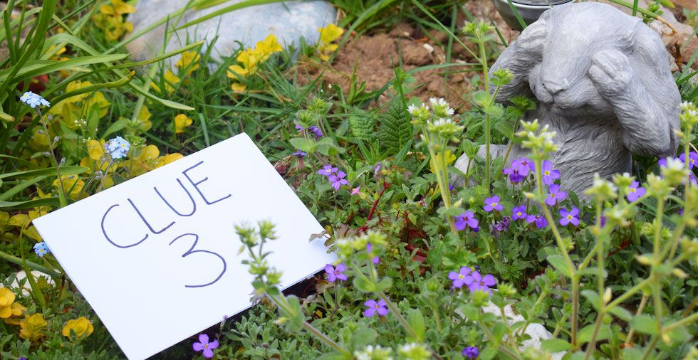 25 Garden Activities For Kids (Fun For All The Family!)