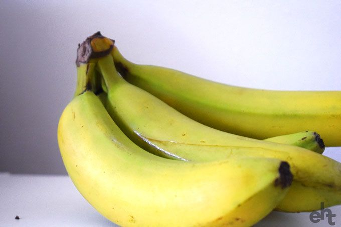 fruit fly by bananas
